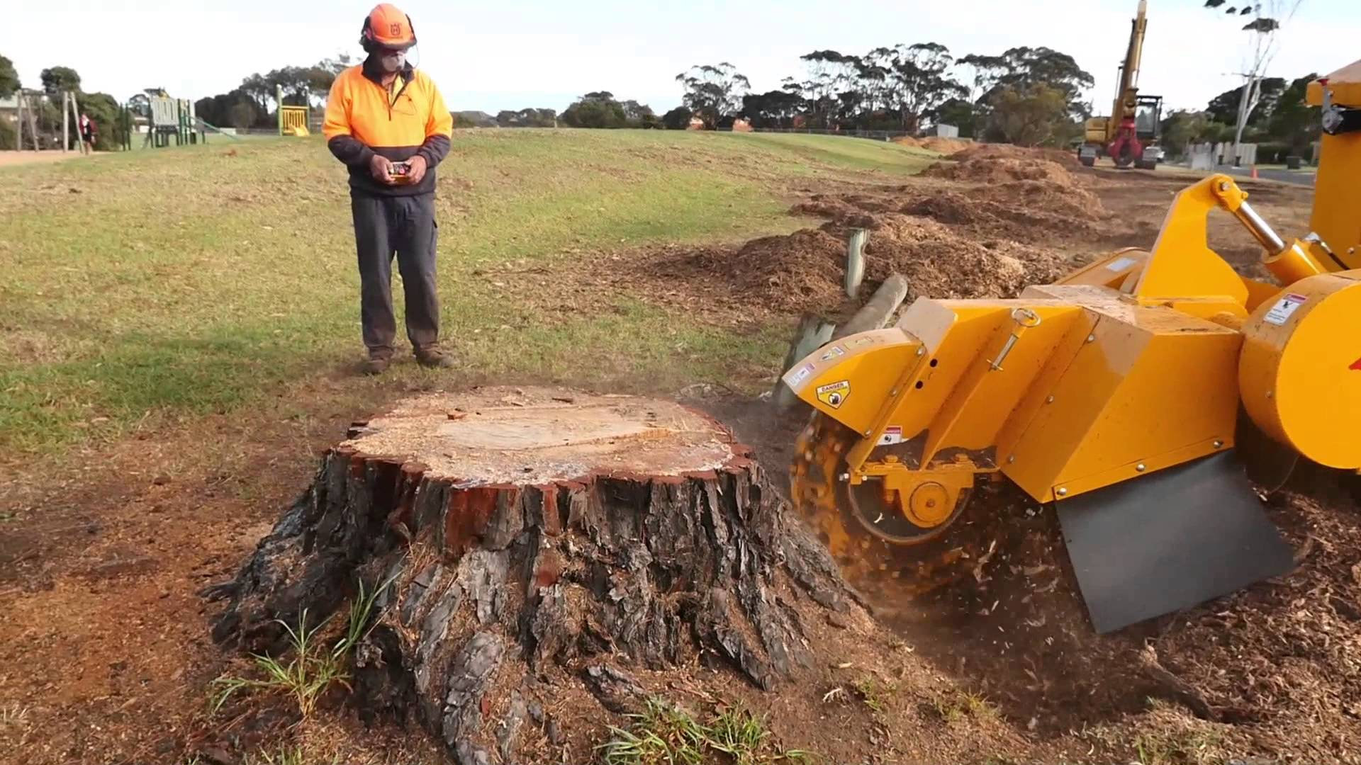 stump_removal